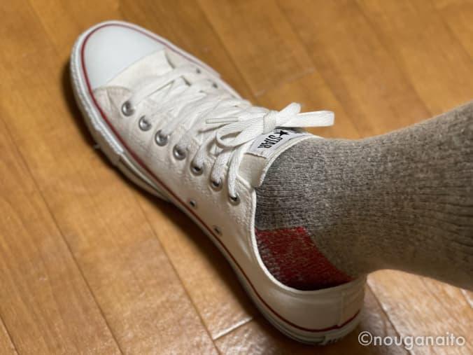 マウンテニアリングを履いて靴を着用している様子